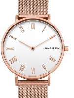 Ceas: Ceas de dama Skagen SKW2714 Hald  34mm 3ATM