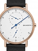 Ceas: Ceas unisex Skagen SKW6390 Signatur  40mm 5ATM
